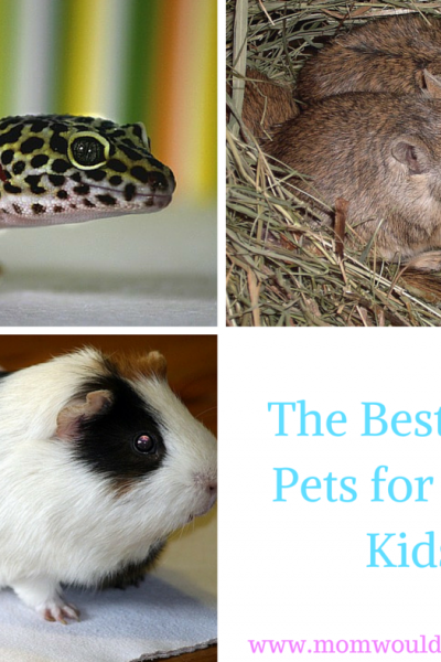 The Best First Pets for Your Kids